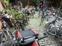 Un petit déj' plein d'cyclistes