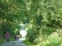 L'Ardennes vallonnée