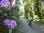 Le printemps au Sart-Tilman